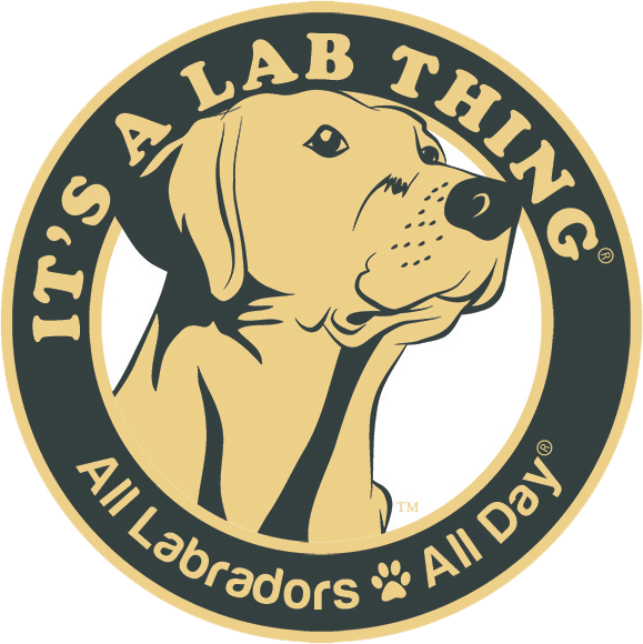 It's a Lab Thing Logo Design