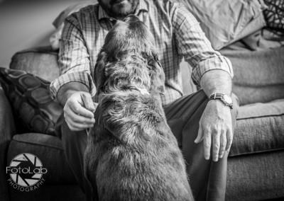 Labrador Friends of the South Duncan-52